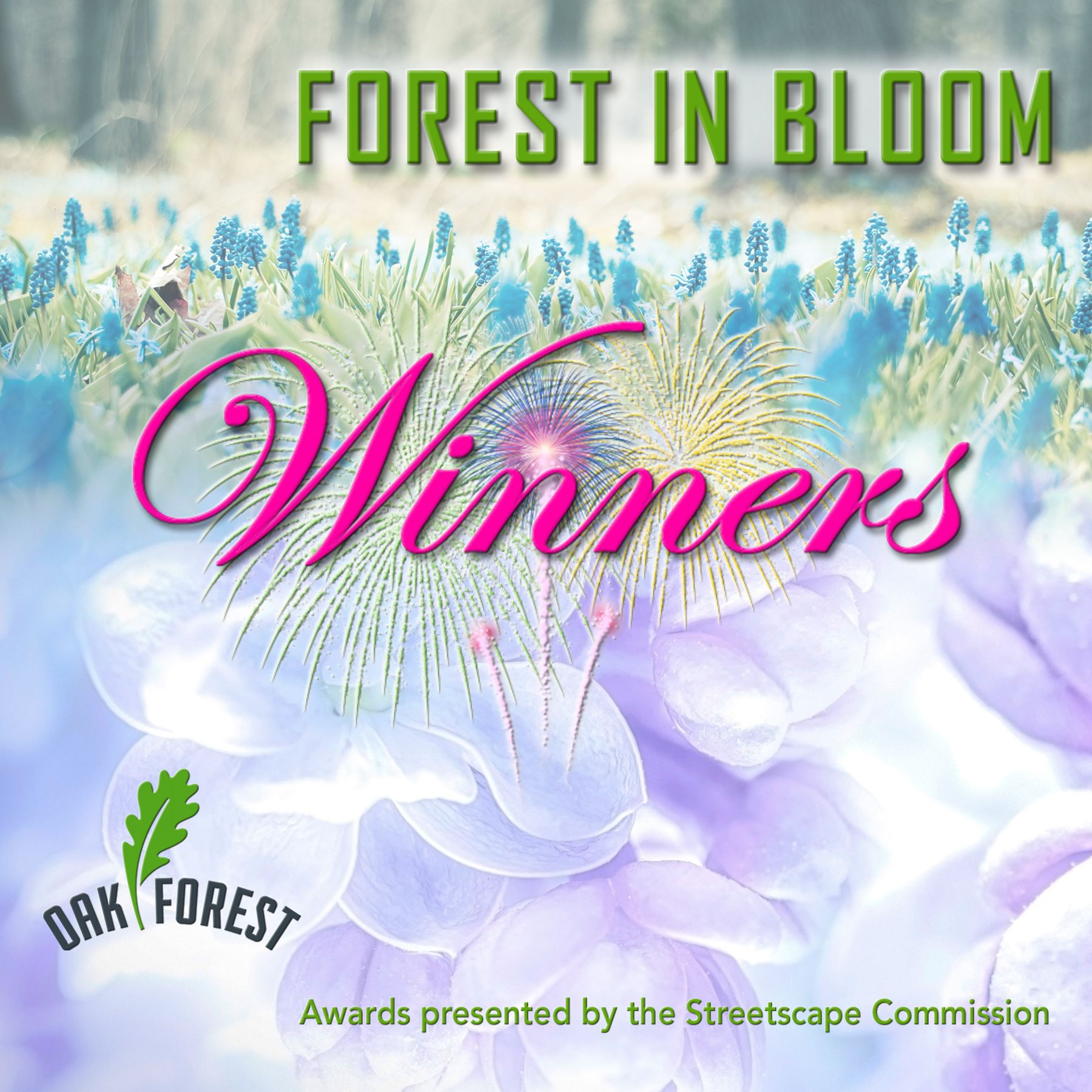 Forest In Bloom 2020